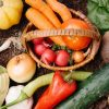 無農薬野菜を使っているおすすめの野菜宅配