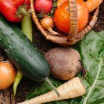 おすすめの九州野菜の野菜宅配サービス比較