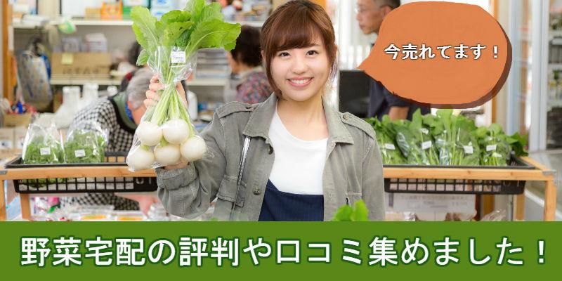 野菜宅配TOP