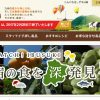 九州ムラコレ市場とは?